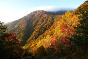 La Giornata Mondiale della Metà della Terra si celebra nel Parco delle Foreste Casentinesi
