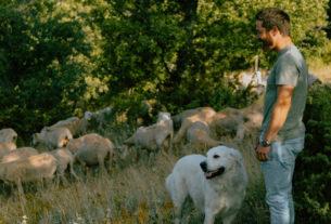 Il pastore Marco Scolastici: una yurta sull'Appennino ed un ritorno consapevole alle origini – Piccoli produttori #7
