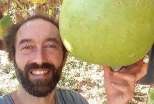 Fabio: l'artista contadino che crea lampade dalle zucche