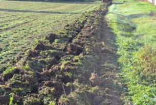 Sappiamo riconoscere la vitalità di un terreno? L'agroecologia e la Scuola della Terra