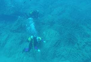 Il mare per tutti: un percorso subacqueo senza barriere