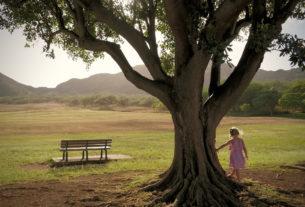 Coltivare l'ascolto profondo per seminare bellezza per le future generazioni