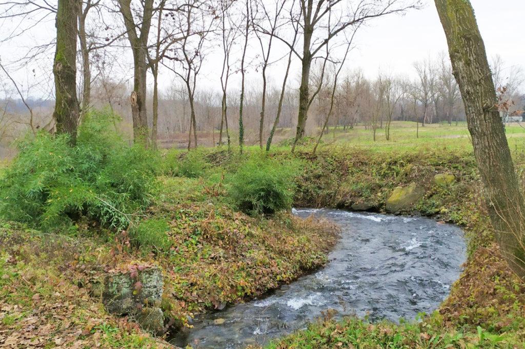 Eco parco