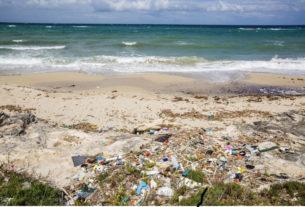 Cerco artisti o artigiani che sappiano lavorare con la plastica riciclata
