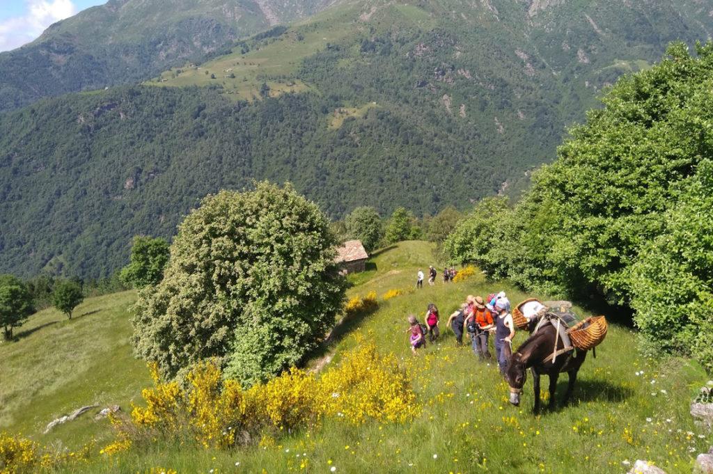 Slow Food Travel Montagne Biellesi