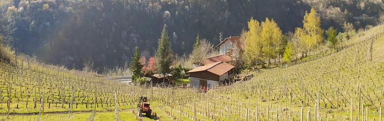 Azienda agricola 'l Garbin