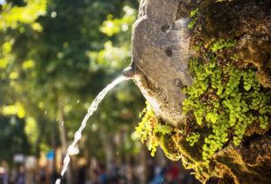 """Alex Zanotelli: """"Se l'acqua, madre della vita, diventa merce"""""""