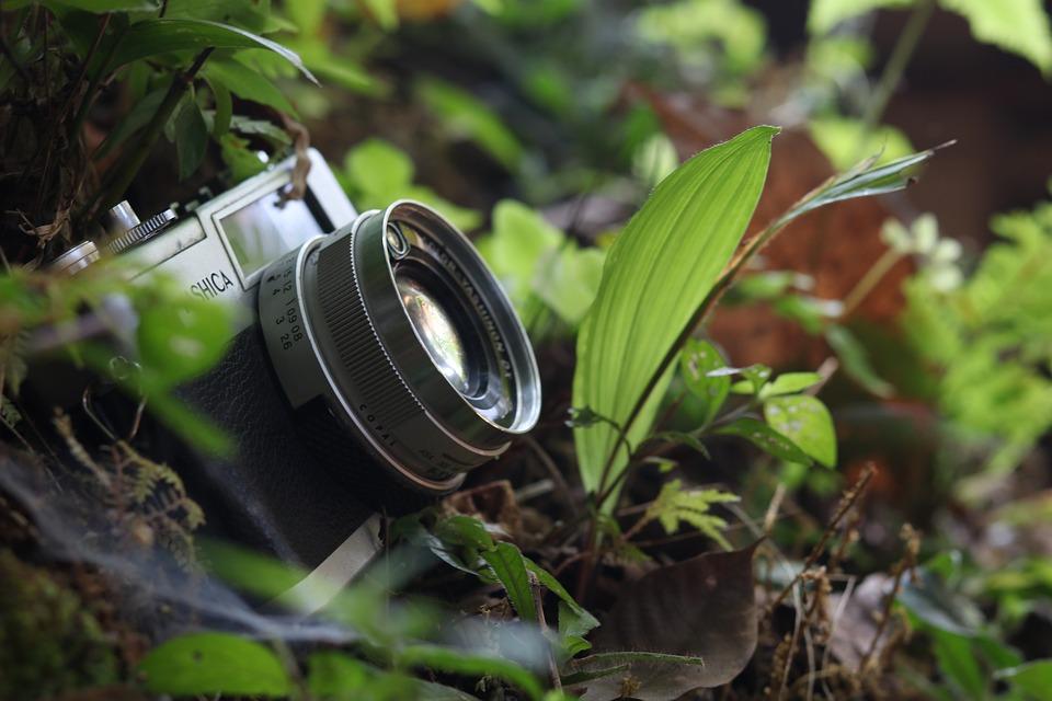 Offro realizzazione foto-video in cambio di ospitalità