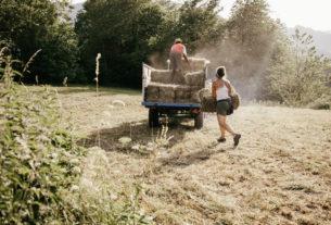 Agricoltura e alimentazione: ecco come cambiarle
