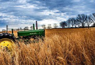 Selezioniamo agronomo o figura con esperienza in agricoltura sociale