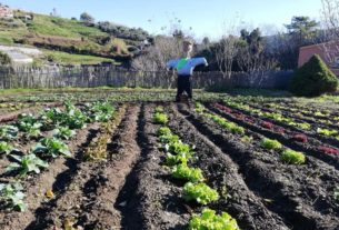 """L'orto """"con il quartiere dentro"""": lo spazio sociale outdoor sulle alture di Prà"""