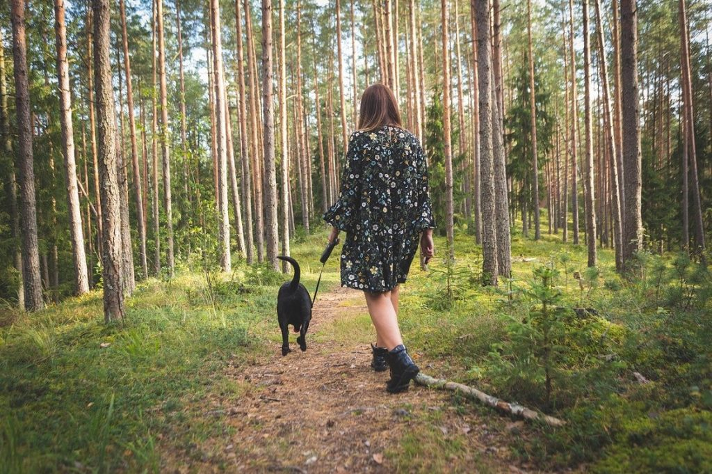 pet forest therapy 5