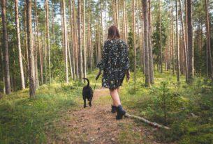 Pet Forest Therapy: passeggiare nei boschi con i nostri amici animali curando noi e loro