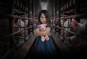 Anche le grandi aziende alimentari contro le gabbie negli allevamenti