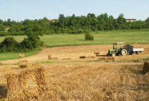 Conterranea: la rete di agricoltori uniti per promuovere la filiera condivisa