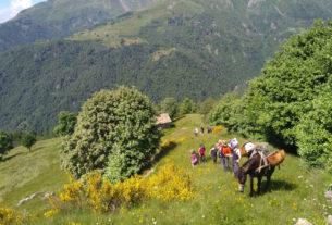 Seminare Comunità, per un abitare condiviso nelle aree rurali e montane