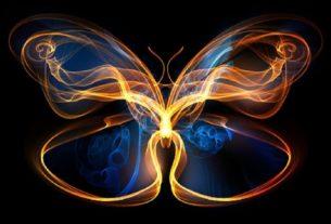 Effetti farfalla: vivere sani, ricchi e felici per salvare il mondo