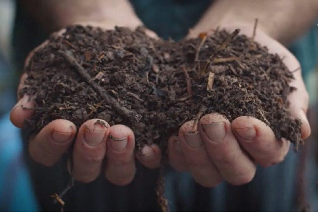 suolo e vita