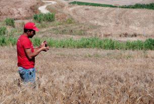 """Valdibella: il """"chilometro etico"""" per combattere l'agricoltura industriale"""
