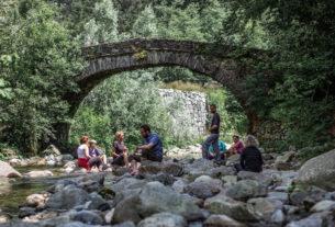 InNaturaTalk: dal forest bathing ai dialoghi sulla natura