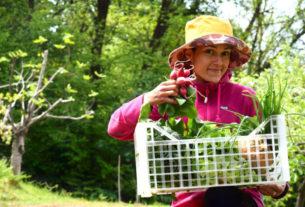 Orti del biellese: mangiare cibo naturale aiutando la comunità