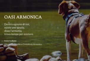 Cerco Oasi Armonica