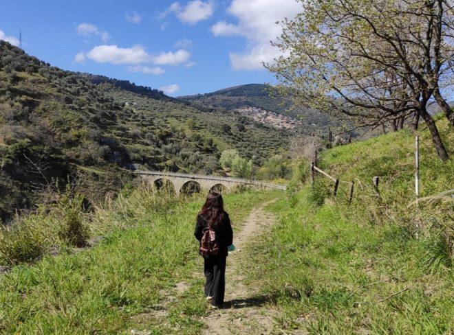 Caso o destino? Storia di un ritorno nella Calabria Che Cambia