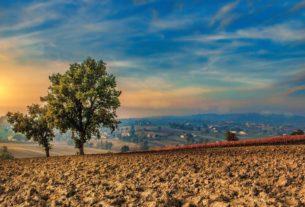 Cose che dovreste sapere (e nessuno vi dice) sul trasferirsi in campagna