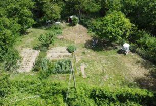 Vendo terreno per orto e apicoltura