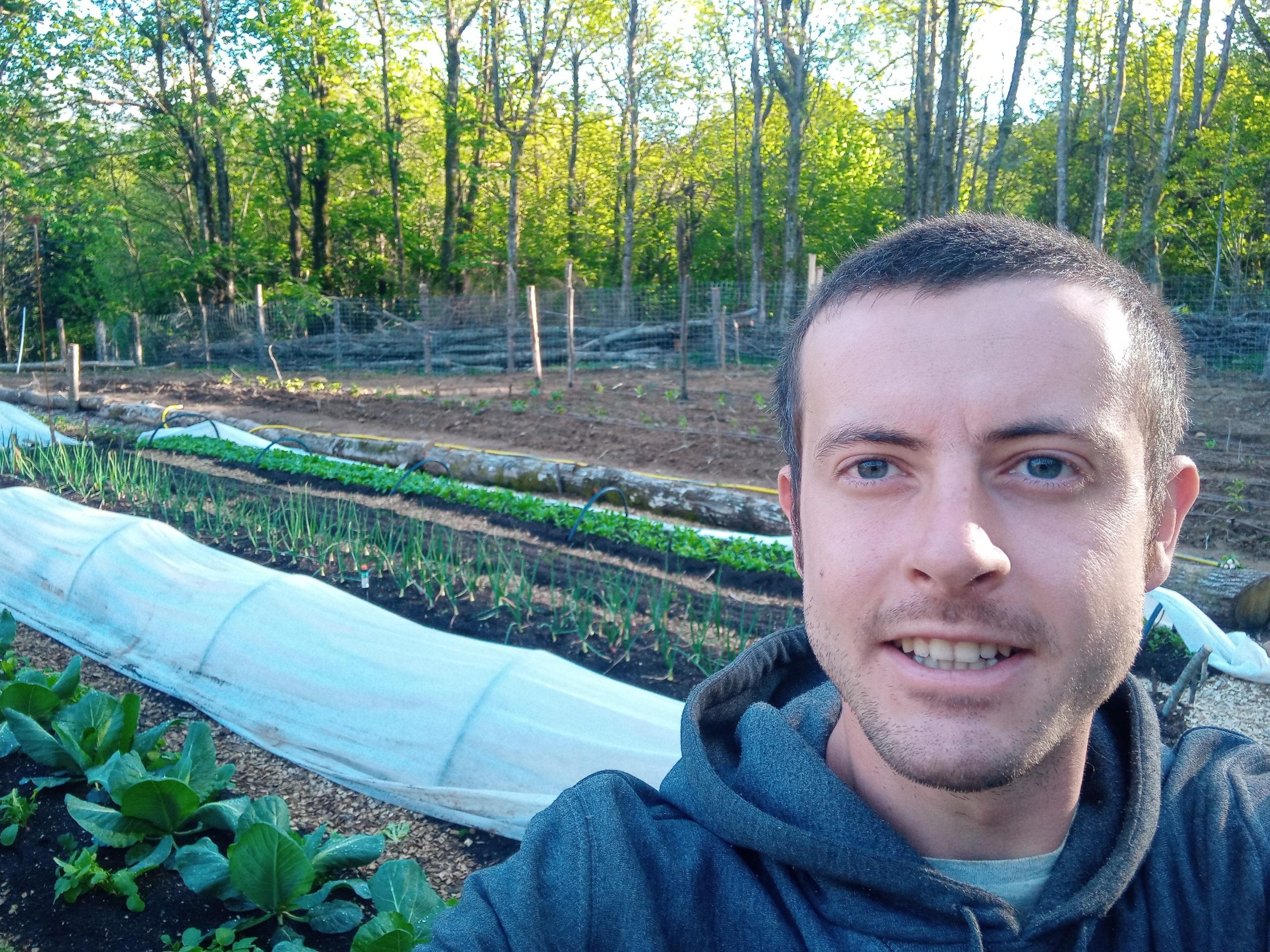 Cerco volontari in Ecovillaggio nascente