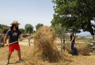 Avamposto Agricolo Autonomo, lo spazio di lotta e vita contadina creato da due giovani