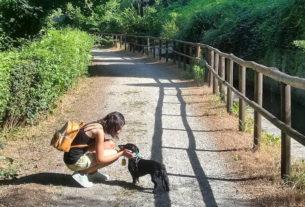 Borghi Dog: viaggiare con gli amici a quattro zampe nei borghi d'Italia