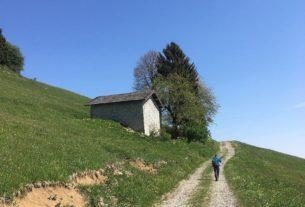 Agriexperience, scoprire l'Italia rurale in modo lento e sincero