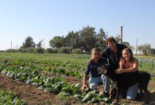Arriva Ficos, la Filiera Corta Siciliana per un cibo sano, buono e locale