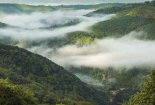 La Casella, l'agriturismo olistico apre alle immersioni forestali