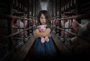End the Cage Age: l'Europa accoglie l'appello contro le gabbie di 1,4 milioni di cittadini