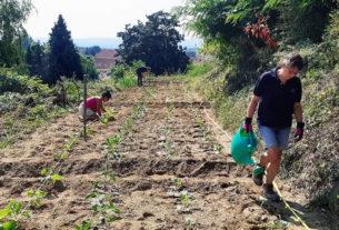 """Orto 133: """"Coltiviamo con la comunità per un nuovo modello di agricoltura sostenibile"""""""