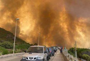 Incendi in Sardegna: cosa sta succedendo e come fare prevenzione