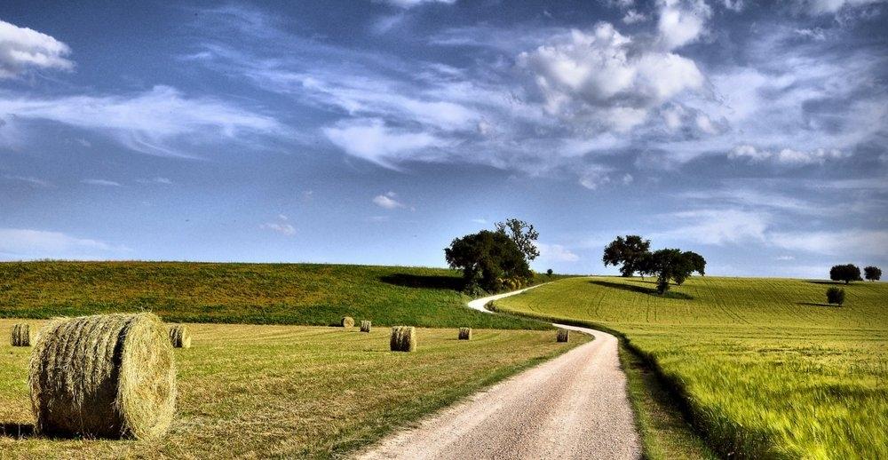 Cedo cascinale ora abbandonato e da ristrutturare in Toscana