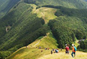 Orsigna Arum Festival: ritroviamoci nel bosco per rigenerare noi stessi e gli altri