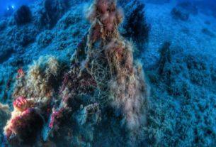 """Sea-ty e le reti fantasma: """"Liberiamo i fondali dalle attrezzature da pesca abbandonate"""""""