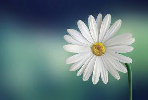 89 splendidi nomi di Dio per aiutarci a trovare la nostra spiritualità