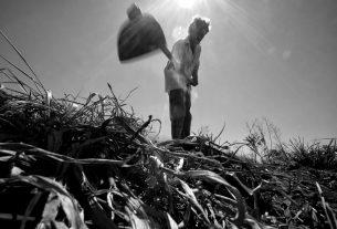 La fotografia sociale di Giulio Di Meo, il reporter che aiuta i contadini senza terra