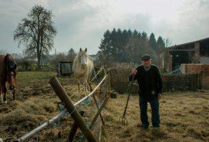 Corto e Fieno, un festival per raccontare storie di vita rurale