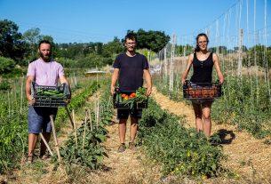 """Andrea di Vallesina Bio: """"La mia agricoltura? Biologica, creativa e solidale"""""""