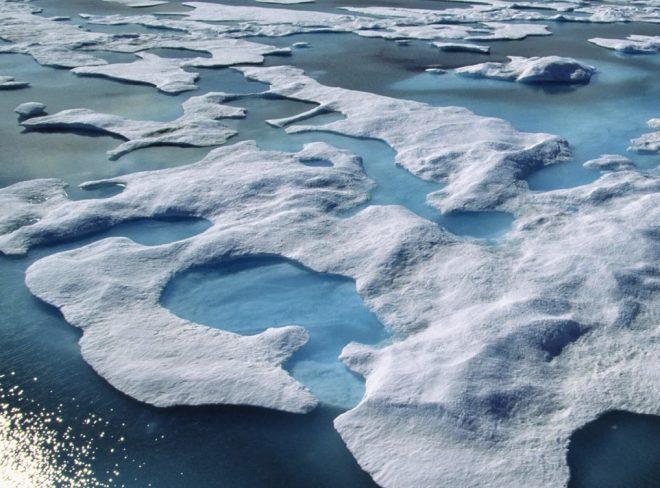Crisi climatica: il WWF crea un fondo per combatterla in 4 mosse