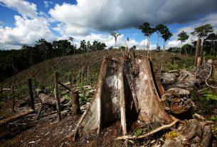 Cosa possiamo aspettarci dalla COP26 sul clima?