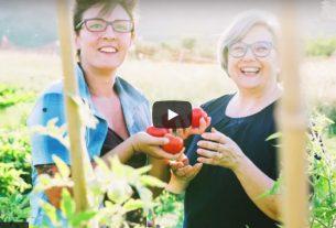 Il Salto nelle Marche: un'agricoltura che rigenera il suolo e le relazioni è possibile! – Io Faccio Così #330