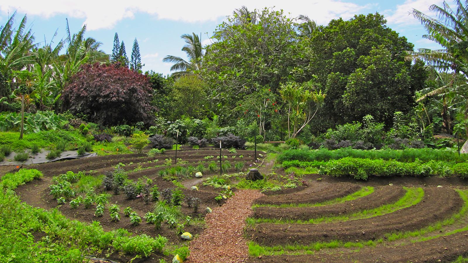 Cerco luogo per avviare ecovillaggio basato sulla Permacultura