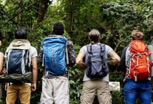 Un viaggio tra parchi e aree protette ai tempi dell'emergenza planetaria